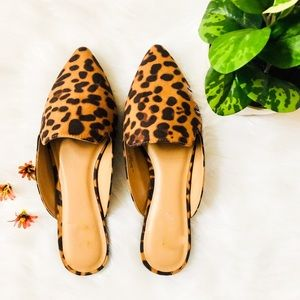 Shoes - 5⭐️LEOPARD MULES SLIP ON FLATS